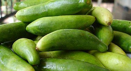 Dondakai - Tindora - Tondli - Ivy gourd - Gherkins