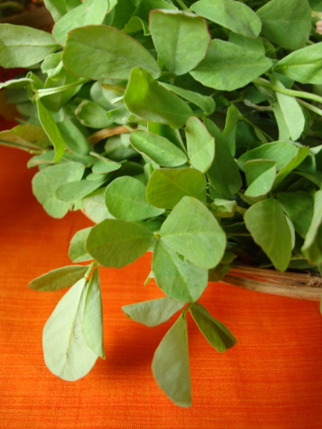 methi-fenugreek-leaves
