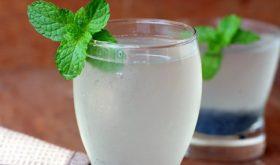 sabja lemonade